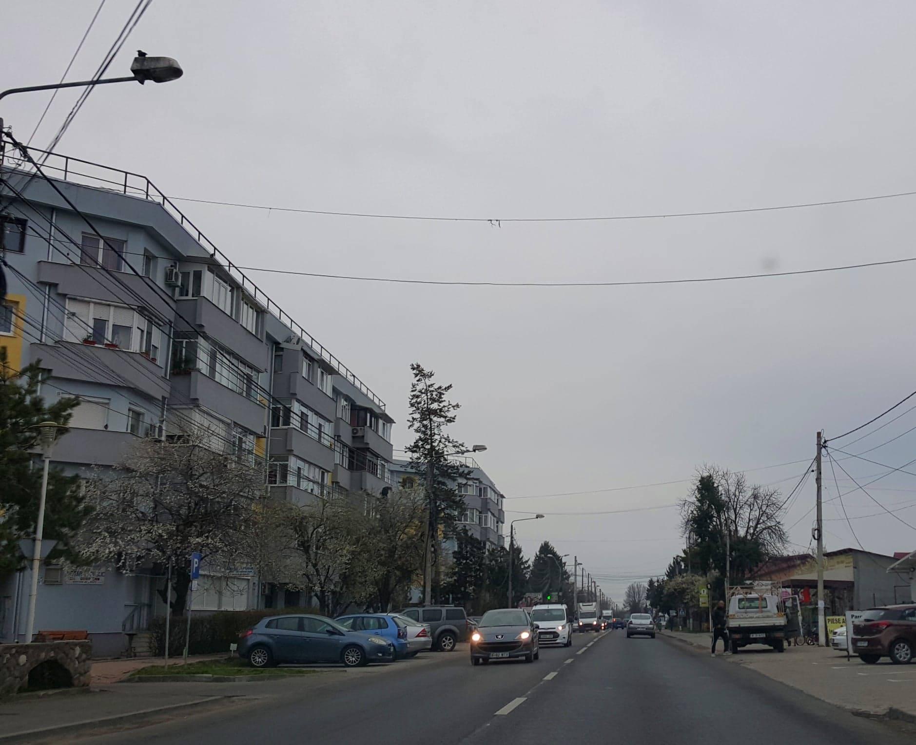 Imobiliare Buftea (1): Cum a capturat Pistol locuința socială a unei bolnave de SIDA